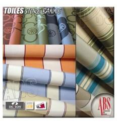 Toiles et coloris Dickson store banne
